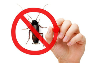 best exterminators in montreal, Laval, South Shore
